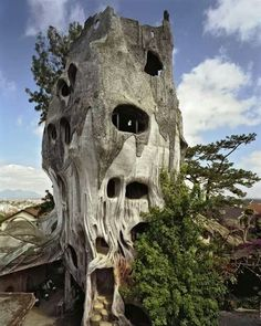 Petrified tree house, Vietnam