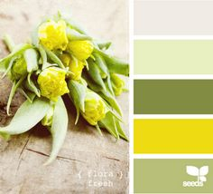 bedroom colors - green yellow gray