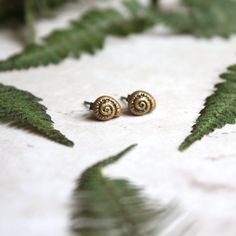 Spiral Shell Earrings  Gold Shell Posts  Snail by GwydionsGarden