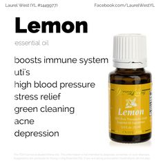 Lemon essential oils is a good choice for a safe, gentle detox. Add a few drops to a glass of water daily. Lemon Essential Oil Benefits, Gentle Detox, Boost Immune System, Green Cleaning, Massage Oil, Young Living Essential Oils, Stress Relief, The Cure, Essentials