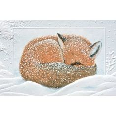 Pumpernickel Press Pack of 16 Napping Fox Fine Art Embossed Deluxe Christmas Greeting Cards
