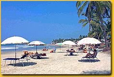 Marari beach is also known as Mararikulam. It is a pristine beach located between Kochi and Alappuzha. The Sound Of Waves, Kerala India, India Tour, Coir, Kochi, Fishing Villages, Beach Holiday, Sands, Palm Trees