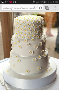 daisy wedding cake that would fit well with a country garden theme.Source From daisy wedding cake that would fit well. Daisy Wedding Cakes, Daisy Cakes, Cake Wedding, Wedding Cake Simple, Daisy Wedding Flowers, Vegan Wedding Cake, Pretty Wedding Cakes, Wedding Yellow, Wedding Vows