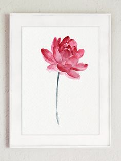 Flor de loto rosa pared arte flor de loto por ColorWatercolor