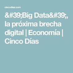 'Big Data', la próxima brecha digital | Economía | Cinco Días
