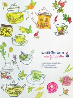hand drawn herbal tea clip art set. Vector EPS and 27 high quality PNG clipart / scrapbook doodle images for commercial and personal use