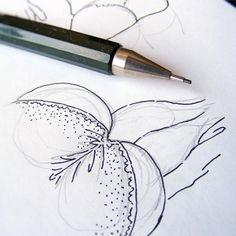Nacho Casanova #erotic #eroticdrawing #erotique #notebook #sketch #line #lineart #minimal #eroticillustration #ink #nachocasanova #knickers #butt #illustration #sketchbook #panties #eroticart