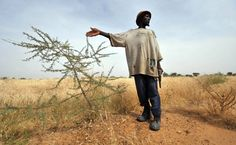 Warnung der Weltbank: Klimawandel könnte 100 Millionen Menschen in die Armut stürzen - Wirtschaft - FAZ