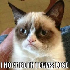My thought on the super bowl ~ Good for grumpy cat! :)