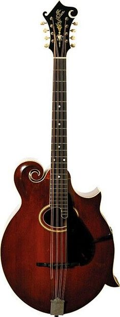 frettedchordophones:  frettedchordophones:  the Gibson F style mandocello  Lardys Chordophone of the day - a year ago   ==Lardys Chordophone of the day - 2 years ago --- https://www.pinterest.com/lardyfatboy/