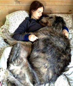 20 Ways to Show Your Pet Love Today