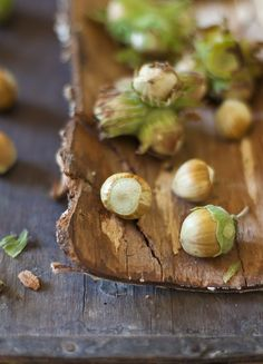 I have some hazelnut bushes at the cottage - have never picked any - might try it!