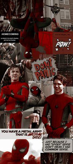 Spiderman Background Wallpaper