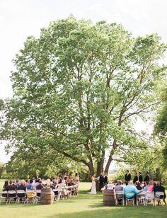 Ceremony under a big tree