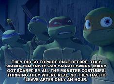 52 Best funny sayings images in 2019 | TMNT, Ninja turtles, Teenage