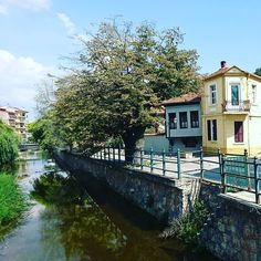 Florina! A quiet and green town in the Northern part of Greece! Greek Memories - Part 16. . . . . . . . #adventure #afternoon #architecture #august #balkans #carpet #europe #florina #ελλάδα #greece #isolated #landscape #makedonia #μακεδονία #μακεδονομάχος #mountain #naturescape #northerngreece #river #quiet #russianmemorial #streets #summer #travel #trees #trip #verdant #visit #yellowhouse Yellow Houses, Summer Travel, Greece, Mountain, Carpet, Europe, River, Memories, Adventure