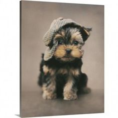 Yorkshire Terrier Retractable Ball Pen by Curiosity Crafts