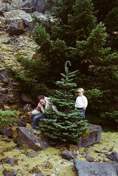 Chopping down the Christmas tree 🎄