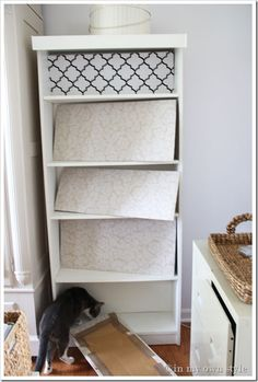 Wrap a piece of cardboard in fabric and put at back of bookcase instead of painting or wallpaper. You can change as often as you wanted....love this idea sooo much