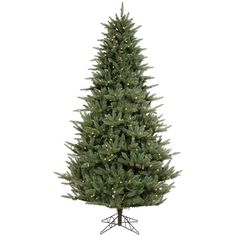 6.5' Vickerman A102766LED Catalina Frasier Fir - Green Christmas Tree