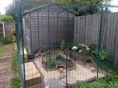 Omlet run used as guinea pig enclosure