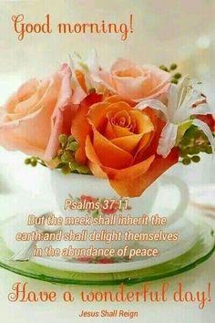 Orange & White - Roses & Lilies in tea cup! Teacup Flowers, Pretty Flowers, Tee Set, Purple Home, Deco Floral, Love Rose, High Tea, Beautiful Roses, Afternoon Tea