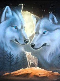 Ночь и волки