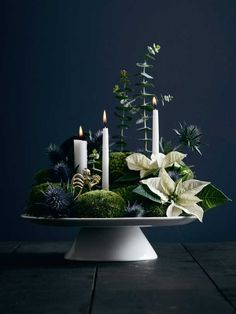 Adventskranz selber basteln: Diese 4 Ideen liegen 2019 im Trend Tinker advent wreath yourself: these 4 ideas are trendy in 2019 Nordic Christmas, Christmas Mood, Modern Christmas, All Things Christmas, Christmas Fashion, Christmas Flowers, Christmas Wreaths, Christmas Crafts, Christmas Ideas