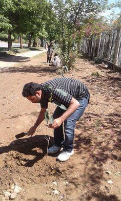 محمدعلی سعید فاونڈیشن اور پھلدار پودوں کی شجرکاری – Fawad Ali Khan Utmanzai