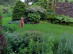 Don Statham Design - Garden Consultant & Writer
