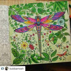 Instagram media desenhoscolorir - Que lindo esse fundo! #Repost @bubbamosh with…