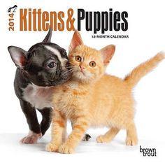 Kittens & Puppies - 2014 Mini Calendar null,http://www.amazon.com/dp/B00E2VCO6Q/ref=cm_sw_r_pi_dp_hpwDsb07BSJKPR7Z