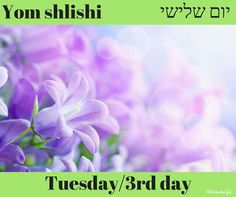 Yom Shlishli Tuesday/3rd day