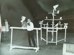 Photograph of 'Ancell and His 40 Painted Pigeons' stage show