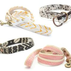 22 Adorable Dog Collars Every Dog Owner Needs