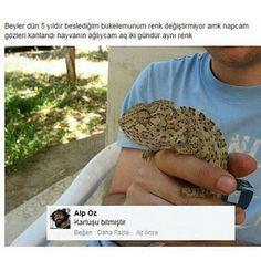 Hımm ok ��Arkadaşlarınızı Etiketleyin #komedi #komik #türkiye #capsler #caps #komedia #haha #mizahossurandayı #mizah http://turkrazzi.com/ipost/1517371644750220653/?code=BUOyXi1lk1t