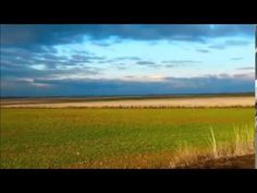 ▶ Oniris - Endless Story (Original Mix) - YouTube