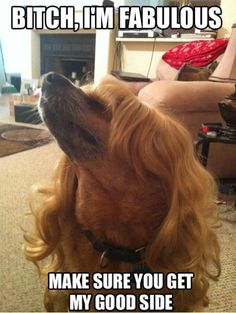 lol reminds me of Mariah Carey.. lol I think it's the hair..