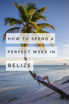 Jungle lodges, cave tours, Mayan ruins, snorkelling and the Great Blue Hole are just a few highlights of this one week itinerary for Belize. Here are some ideas for what to do in Belize, and places to stay. Barbados, Jamaica, Belize Honeymoon, Belize Vacations, Belize Travel, Trip To Belize, Belize Tours, Belize Resorts, Honduras