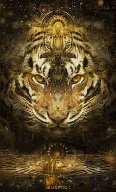 Tiger as your spirit guide. The tiger comes into your life to remind you that you are not powerless. Take action! By affinity with the tiger, you may enjoy dealing with life matters spontaneously, trusting your intuition and acting fast when needed.