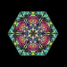 Google Image Result for http://2.bp.blogspot.com/_FnTnzz8aJYk/S-2COJ7enuI/AAAAAAAAAHY/Qwsi27K5qjg/s1600/Kaleidoscope%2BBloomin%2Balgae1-2.jpg