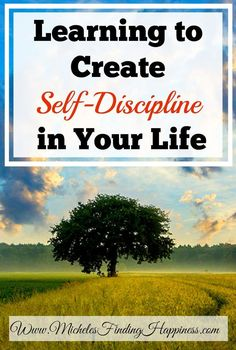 Self-discipline is the art of delaying gratification long enough to get things done.  Self-discipline can be empowering and help you to lead a happier, healthier life.