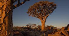 namibia africa landscape 4k ultra hd wallpaper