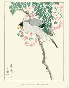 From: Japanese Woodblock Bird Prints http://store.doverpublications.com/0486470504.html