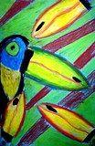 Toucans of the rainforest