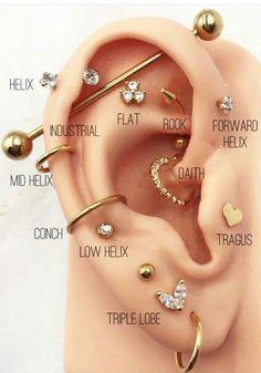 Innenohr Piercing, Spiderbite Piercings, Ear Piercings Chart, Pretty Ear Piercings, Ear Peircings, Types Of Ear Piercings, Multiple Ear Piercings, Different Ear Piercings, Rook Piercing Jewelry