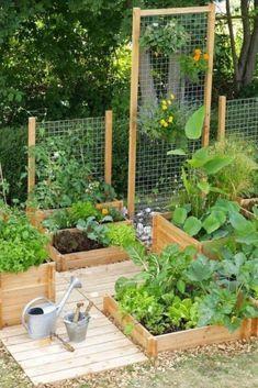 Backyard Vegetable Gardens, Vegetable Garden Design, Outdoor Gardens, Herbs Garden, Vegetables Garden, Small Backyard Landscaping, Landscaping Ideas, Small Backyard Design, Backyard Privacy
