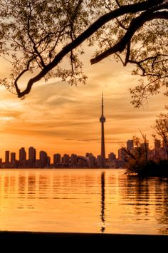 View top-quality stock photos of Toronto Evening Cityscape I. Find premium, high-resolution stock photography at Getty Images. Toronto Skyline, Toronto City, Toronto Travel, Downtown Toronto, Westminster, Toronto Ontario Canada, Beautiful Places, Beautiful Sunset, Toronto Canada