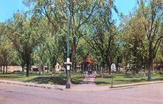 City Park - Chaska, Minnesota Postcard Chaska Minnesota, Park City, Abandoned, Places, Postcards, Roots, Beautiful, Left Out, Ruin