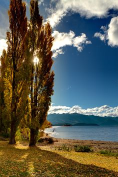 Autumn in Lake Wanaka, New Zealand. I want to go back to lake wanaka